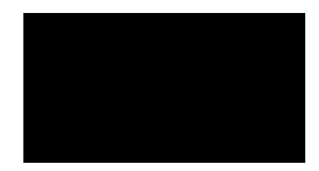 Solidoriginal Logo